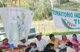 Corregidores del Territorio Multiétnico TIM reafirman sus derechos sobre el bosque ancestral Tsimane