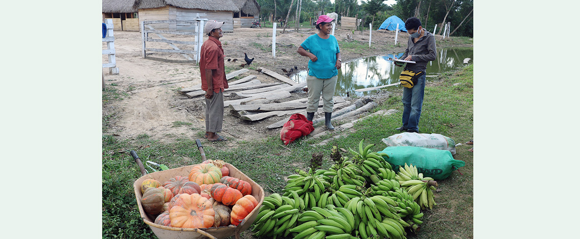 San Ignacio de Mojos: la agricultura familiar una alternativa viable durante y después de la emergencia sanitaria