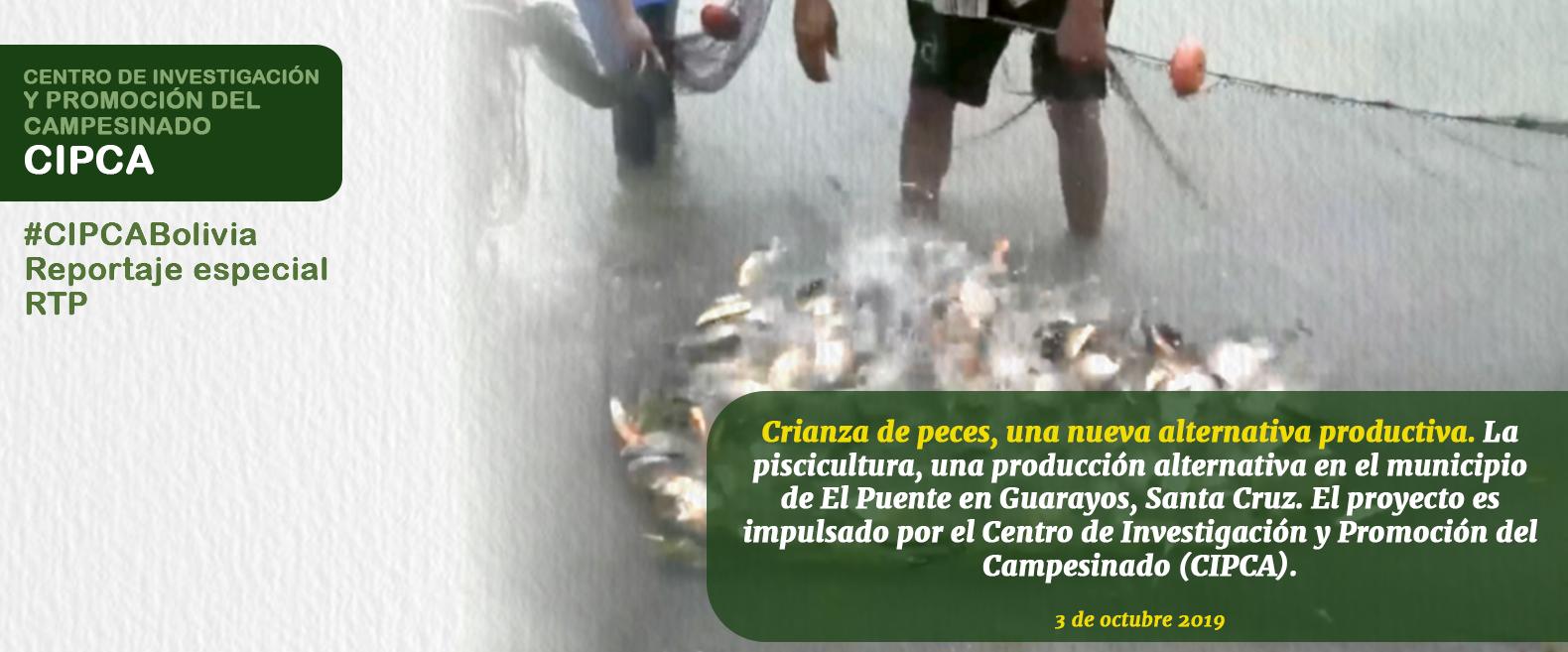 Crianza de peces, una nueva alternativa productiva
