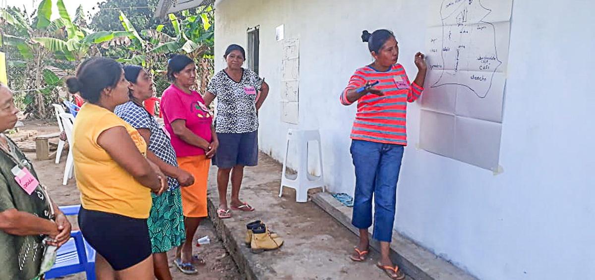 Mujeres guarayas analizan sobre acceso y aprovechamiento de RRNN rumbo a la gobernanza ambiental