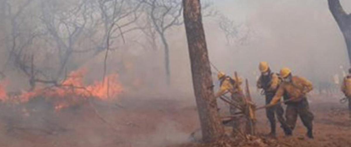 Entidades académicas piden declarar zona de desastre a la Chiquitania