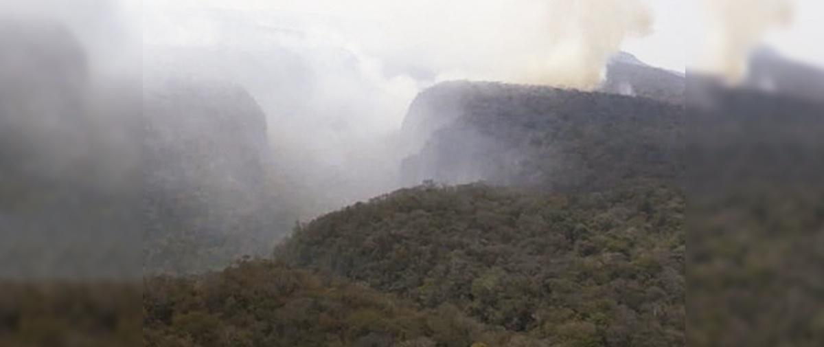 21 organizaciones condenan decreto que permitió quema en la Chiquitanía