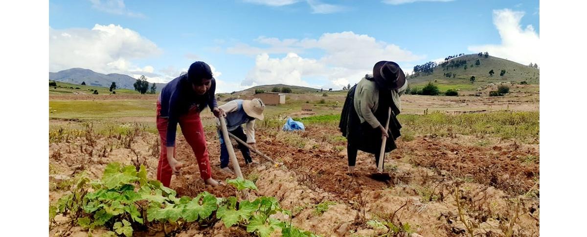 Residentes no rompen sus vínculos con sus comunidades de origen y la agricultura familiar