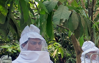 Jóvenes  Reforestadores de la Amazonía logran apoyo de programas del Ministerio de Desarrollo Rural y Tierras
