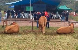 Productores e instituciones del Chaco proponen conformar plataforma para fortalecer la producción ganadera sostenible
