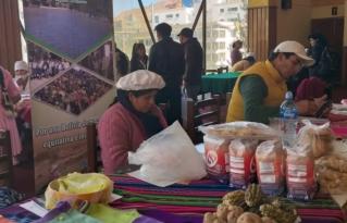 Bolivia inicia el Decenio de la Agricultura Familiar para fortalecer a los pequeños productores