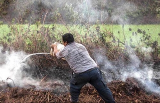 Indicios: asentados trafican tierra y madera y no cumplen función social