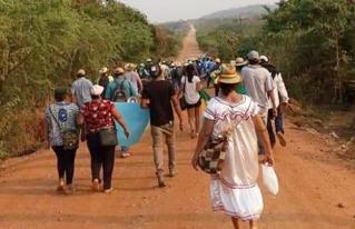 50 ONGs presentan informes a la ONU por violación a derechos indígenas y medioambientales