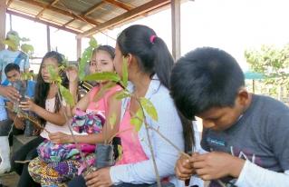 Jóvenes reforestadores de la Amazonía Norte se capacitan en gestión integral sostenible del bosque