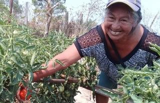 Desabastecimiento y pérdidas de productos son algunas dificultades que viven municipios de la Amazonía Sur