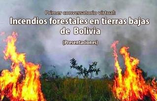 Expertos proponen gestión informativa, seguimiento a políticas públicas y un modelo de desarrollo sostenible ante incendios forestales