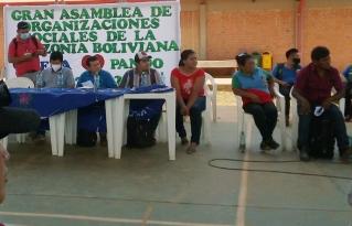 Nace una alianza inter orgánica de la castaña en la Amazonía norte de Bolivia