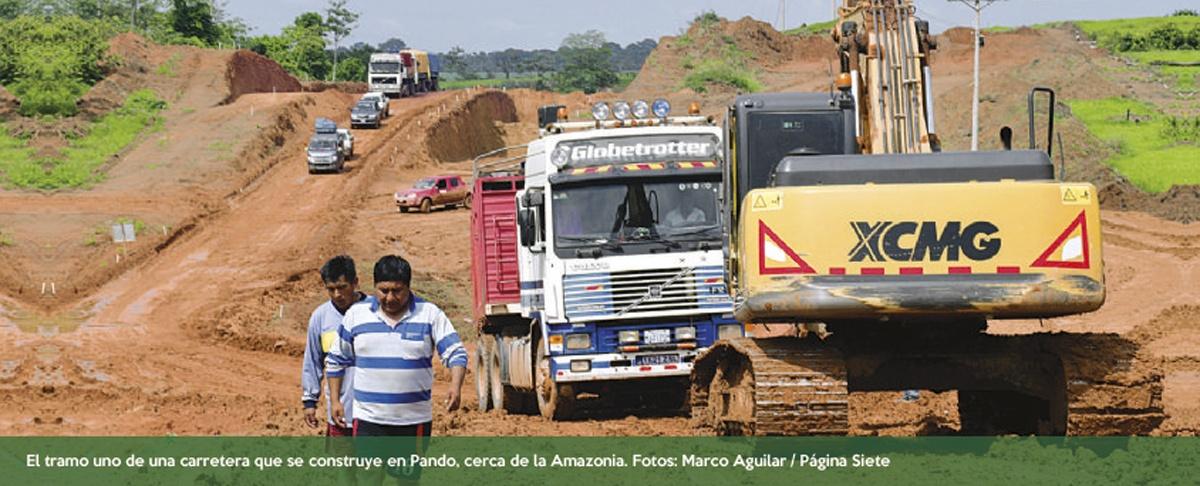 Monocultivo y producción de soya amenazan a Amazonia