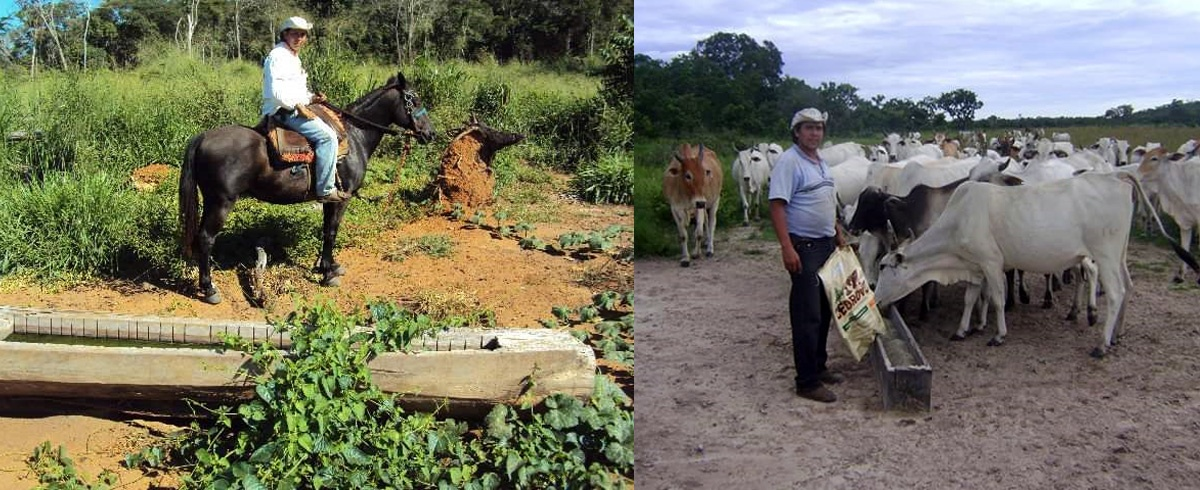 El agronegocio no está produciendo tanto alimento en cuarentena