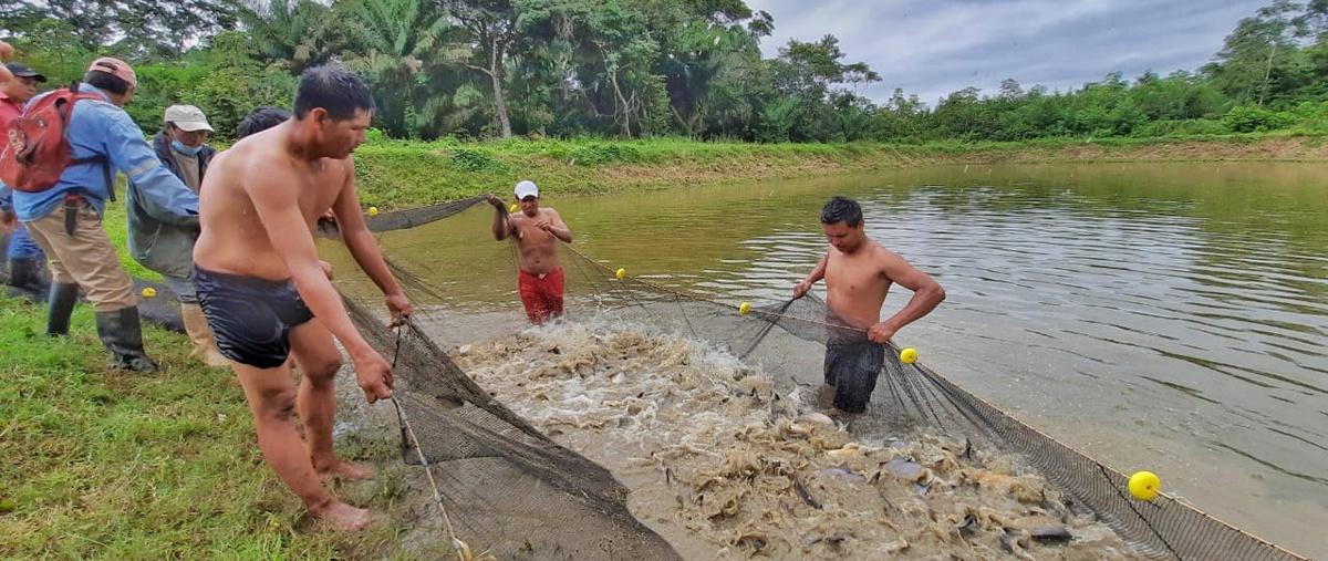 Gobernanza ambiental, una estrategia para superar las  desigualdades en tierras bajas.