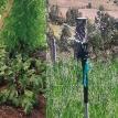 En Anzaldo cosechan agua y hacen florecer en tierra seca