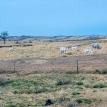 Marco legal actual cierra posibilidades al desarrollo rural sostenible en la Chiquitania