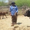Autonomía en Charagua Iyambae: La lucha ancestral guaraní que hoy rinde frutos