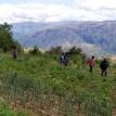 Agricultura sostenible en comunidades campesinas permite reducir la migración a ciudades