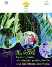 El Asaí. Construyendo el complejo productivo de una Superfruta amazónica