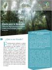 """Sínodo para la Amazonía """"Nuevos caminos para la iglesia y para una Ecología Integral"""""""