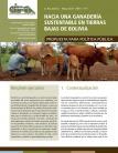 Hacia una ganadería sustentable en tierras bajas de Bolivia. Propuesta para política pública