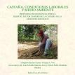 Castaña, condiciones laborales y medio ambiente