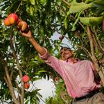 Desarrollo rural sostenible con enfoque territorial